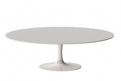 1 стол apriori T овальный